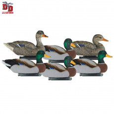 Hunting Decoys for Sale: Turkey & Waterfowl Decoys | Wing Supply